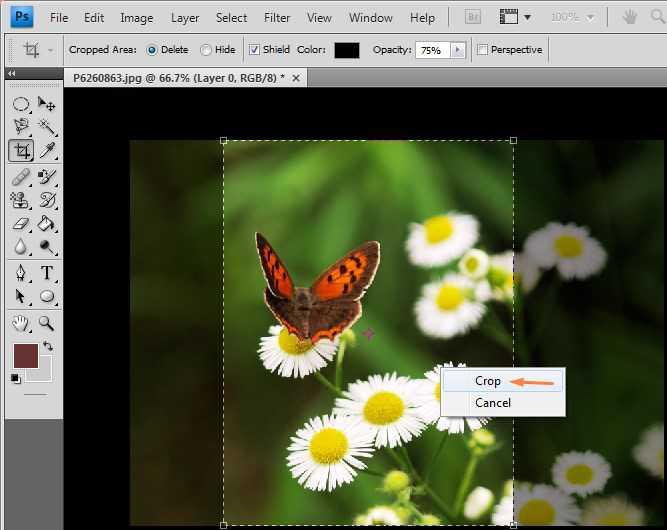 cara cropping foto di photoshop 2